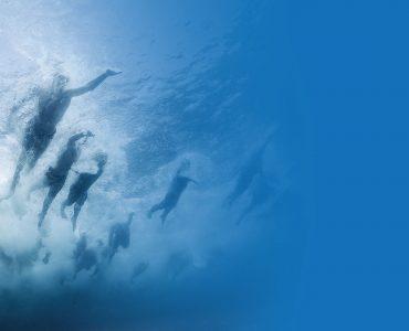 Swim The Island Sirmione
